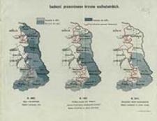 Ludność prawosławna kresów nadbużańskich : r. 1897, r. 1907, r. 1917