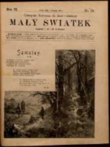 Mały Światek. R. 9, Nr 32 (1895/1896)