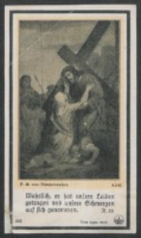 [Droga Krzyżowa] : [zespół obrazków religijnych] [Dokument ikonograficzny]