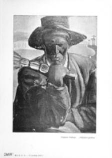 Świat : [pismo tygodniowe ilustrowane poświęcone życiu społecznemu, literaturze i sztuce. R. 2 (1907), nr 51 (21 grudnia)