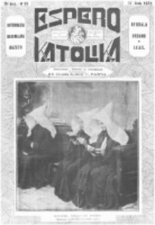 Espero Katolika.Jaro 25a, No 60 (1928/1929)